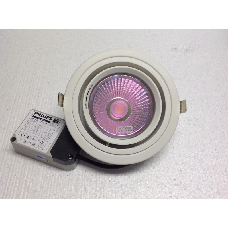 CIRCUSPOT LED 30W ROSE INTENSE 3