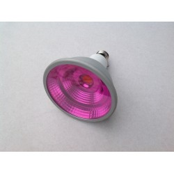LED COB PAR30 ROSE ALIMENTAIRE 10W E27