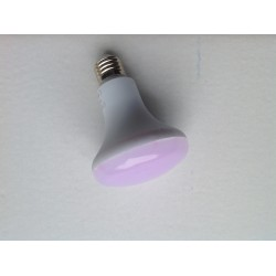 LED R80 10W ROSE ALIMENTAIRE E27