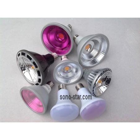 Lampes ampoules led pour commerces alimentaires