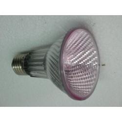 Lampe halogène rosée 75W E27 25° faisceau normal diamètre 80mm