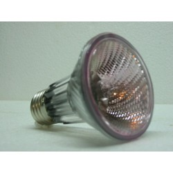 Lampe halogène rosée 50W 230V Diam 63 mm